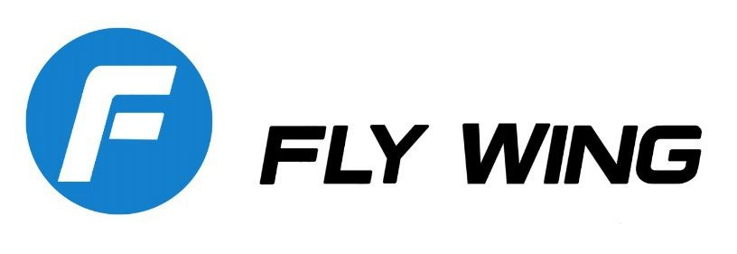 FLYWING RC